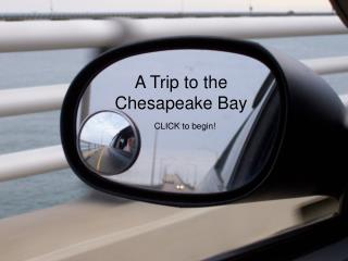 A Trip to the Chesapeake Bay