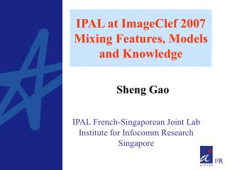 IPAL at ImageClef 2007 Mixing Features, Models and Knowledge