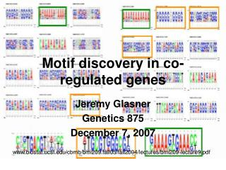 Motif discovery in co-regulated genes