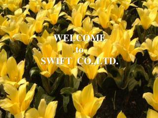 WELCOME to SWIFT  CO.,LTD.