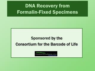 DNA Recovery from  Formalin-Fixed Specimens