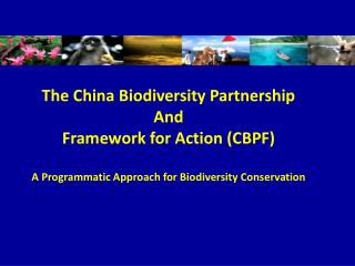 The China Biodiversity Partnership  And Framework for Action (CBPF)
