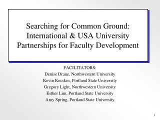 Searching for Common Ground: International & USA University Partnerships for Faculty Development