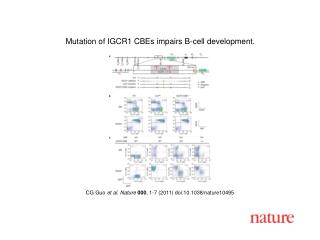 CG Guo  et al .  Nature 000 ,  1 - 7  (2011) doi:10.1038/nature10495