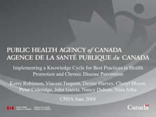 The Canadian Best Practices Initiative (CBPI)