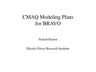 CMAQ Modeling Plans  for BRAVO