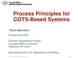 Process Principles for COTS-Based Systems