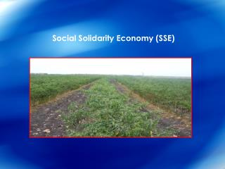 Social Solidarity Economy (SSE)