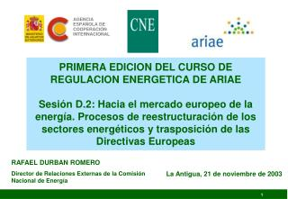 RAFAEL DURBAN ROMERO Director de Relaciones Externas de la Comisión Nacional de Energía