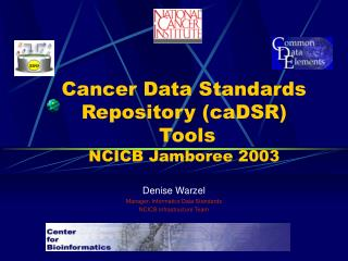 Cancer Data Standards Repository (caDSR)  Tools  NCICB Jamboree 2003