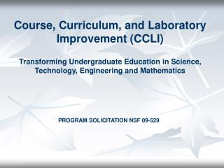 CCLI Vision and Scope
