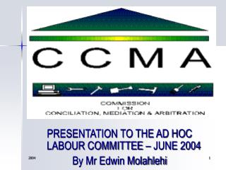 PRESENTATION TO THE AD HOC LABOUR COMMITTEE – JUNE 2004 By Mr Edwin Molahlehi