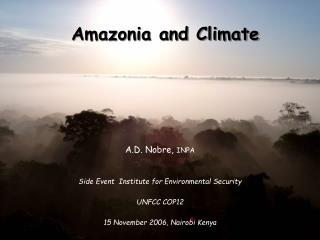Amazonia and Climate