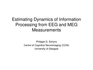 Estimating Dynamics of Information Processing from EEG and MEG Measurements
