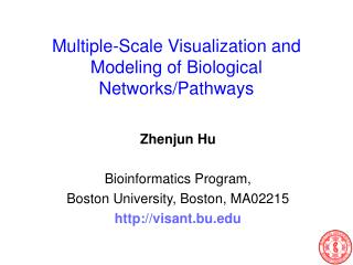 Multiple-Scale Visualization and Modeling of Biological Networks/Pathways