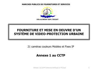 FOURNITURE ET MISE EN OEUVRE D'UN SYSTÈME DE VIDEO-PROTECTION URBAINE
