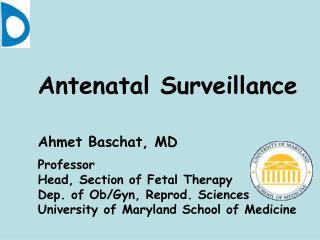 Antenatal Surveillance