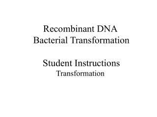 Recombinant DNA  Bacterial Transformation Student Instructions Transformation