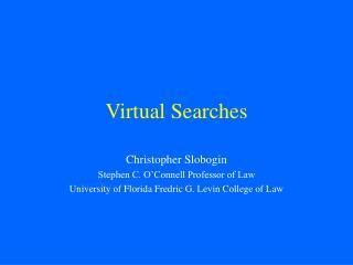 Virtual Searches