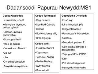 Dadansoddi Papurau Newydd:MS1