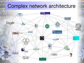 Complex network architecture