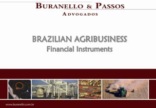 BRAZILIAN AGRIBUSINESS Financial Instruments
