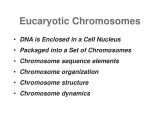 Eucaryotic Chromosomes DNA is Enclosed in a Cell Nucleus