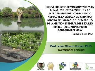 Prof.  Jesús Olivero Verbel . Ph.D . Investigador principal