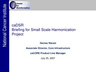 caDSR  Briefing for Small Scale Harmonication Project