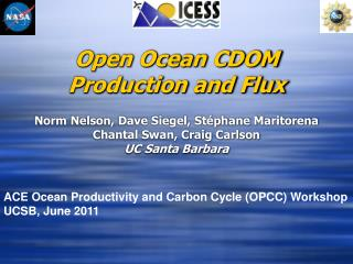 Open Ocean CDOM Production and Flux