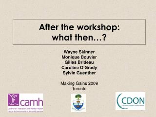 After the workshop:  what then…?