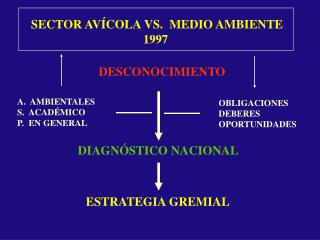 SECTOR AVÍCOLA VS.  MEDIO AMBIENTE 1997