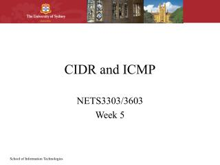 CIDR and ICMP