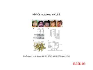 MA Deardorff  et al.  Nature 000 ,  1-5  (2012) doi:10.1038/nature 11316
