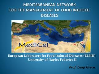 MEDITERRANEAN NETWORK  FOR THE MANAGEMENT OF FOOD INDUCED DISEASES