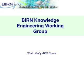 BIRN Knowledge Engineering Working Group