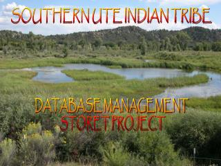 SOUTHERN UTE INDIAN TRIBE