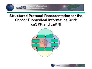 Structured Protocol Representation for the Cancer Biomedical Informatics Grid: caSPR and caPRI