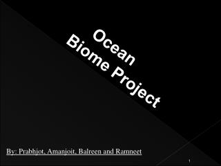 Ocean  Biome Project