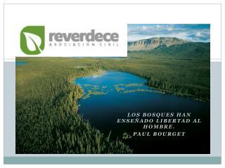 Los  bosques han enseñado libertad  al hombre.  Paul Bourget