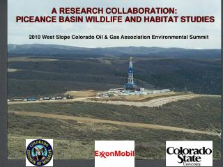 A RESEARCH COLLABORATION:  PICEANCE BASIN WILDLIFE AND HABITAT STUDIES