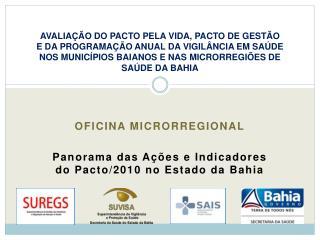 Oficina microrregional Panorama das Ações e Indicadores do Pacto/2010 no Estado da Bahia