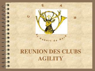 REUNION DES CLUBS AGILITY