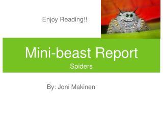 Mini-beast Report