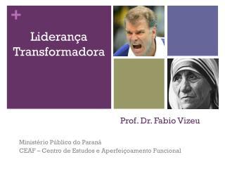 Prof. Dr. Fabio Vizeu