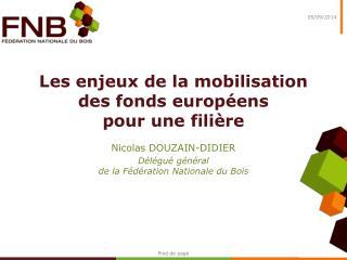 Les enjeux de la mobilisation des fonds européens  pour une filière