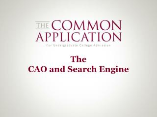 The  CAO and Search Engine