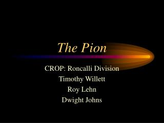 The Pion