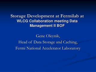 Storage Development at Fermilab at  WLCG Collaboration meeting Data Management II BOF