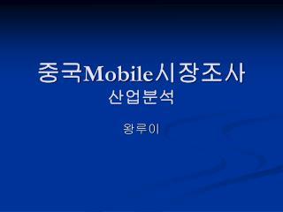 중국 Mobile 시장조사 산업분석